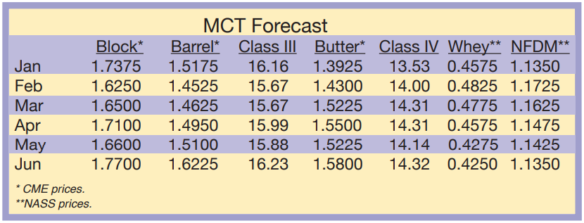 MCT Forecast January 2021