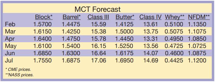 MCT Forecast February 2021